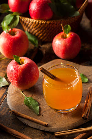 Organic Apple Cider with Cinnamon Ready to Drink photo