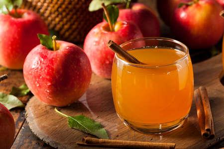 alimentos y bebidas: Orgánica de la sidra de manzana con canela listo para beber Foto de archivo