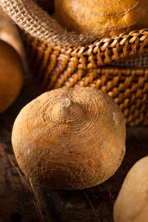 tuber: Raw Organic Brown Jicama in a Basket Stock Photo