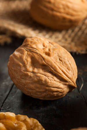 Raw Organic Whole Walnuts Ready to Eat Stock Photo