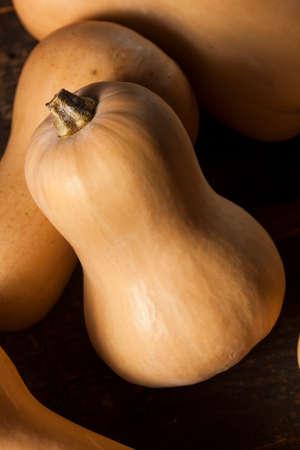 butternut squash: Raw Organic Butternut Squash on a Background