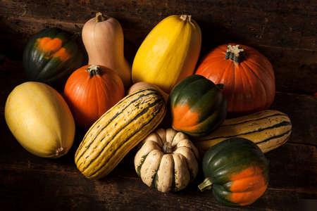butternut squash: Organic Assorted Autumn Squash on a Background