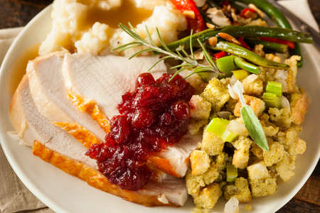thanksgiving turkey: Homemade Thanksgiving Turkey on a Plate with Stuffing and Potatoes