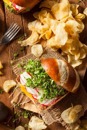 Zelfgemaakte Vegetarische Soja Tofu Hamburger Met Chips