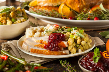 thanksgiving day: Homemade Thanksgiving Turkey on a Plate with Stuffing and Potatoes