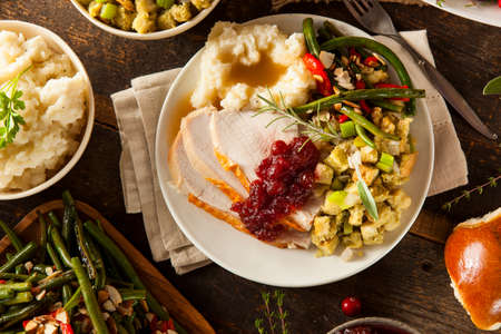 feast: Homemade Thanksgiving Turkey on a Plate with Stuffing and Potatoes