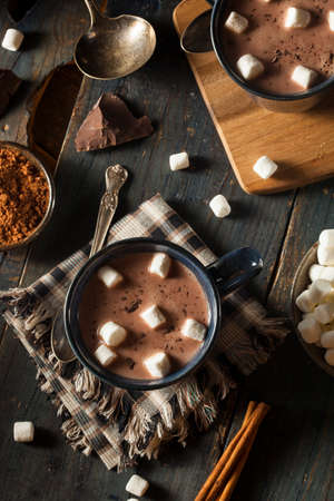 hot chocolate drink: Homemade Dark Hot Chocolate with Marshmallows and Cinnamon Stock Photo