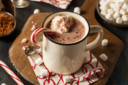 Homemade Peppermint Hot Chocolate with Whipped Cream Stock Photo