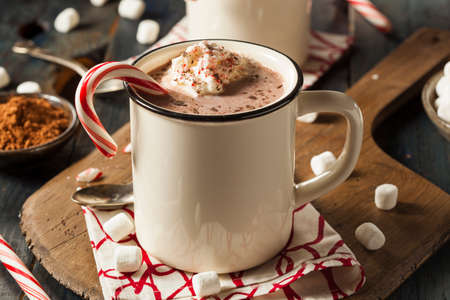 hot chocolate drink: Homemade Peppermint Hot Chocolate with Whipped Cream Stock Photo