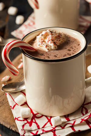 peppermint cream: Homemade Peppermint Hot Chocolate with Whipped Cream Stock Photo