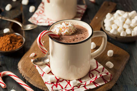 candy cane: Homemade Peppermint Hot Chocolate with Whipped Cream Stock Photo