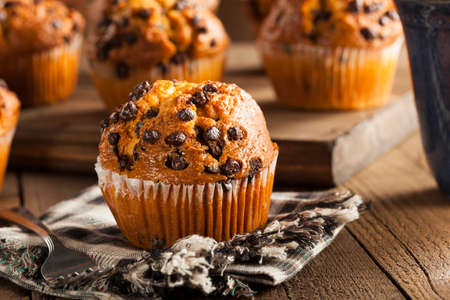 chocolate background: Homemade Chocolate Chip Muffins Ready for Breakfast