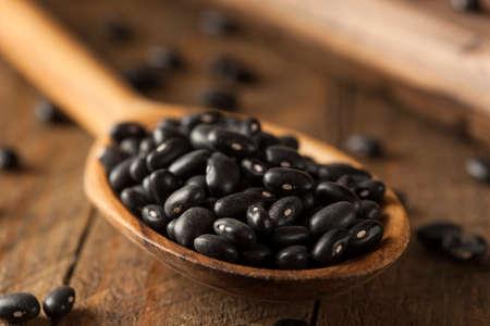 bean plant: Beans Organic Raw seco negros en una cuchara Foto de archivo