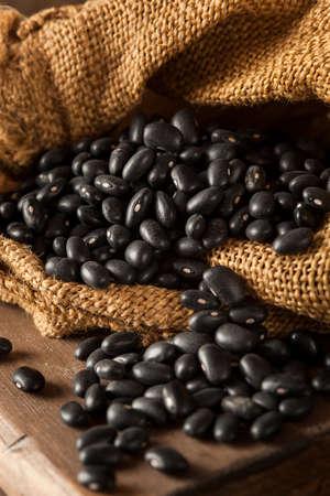 black beans: Organic Raw Dry Black Beans in a Spoon