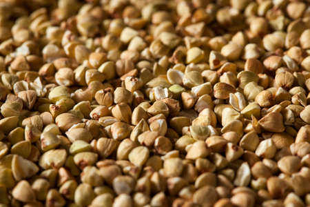 protein crops: Raw Dry Organic Buckwheat in a Spoon