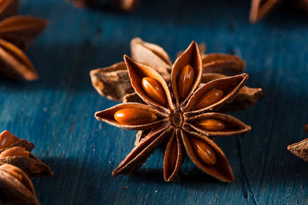 Organic Dry Star of Anise on a Background Imagens