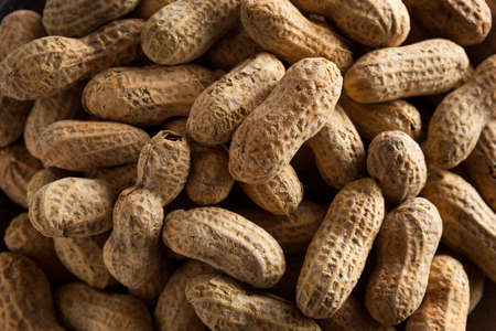 Salted Roasted Shelled Peanuts Ready to Eat Stock Photo
