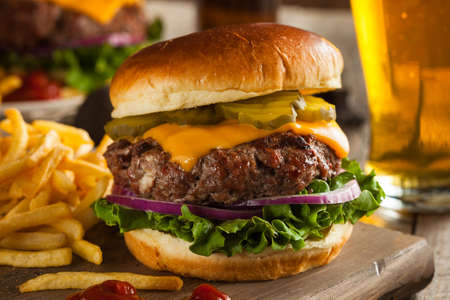 Grass Fed Bison Hamburger with Lettuce and Cheese Foto de archivo