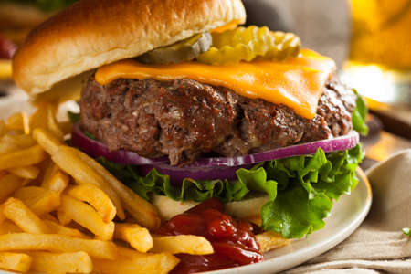 hamburger and fries: Grass Fed Bison Hamburger with Lettuce and Cheese Stock Photo