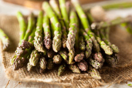 Organic Raw Green Asparagus Ready to Cook