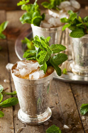 kentucky: Refreshing Cold Mint Julep Stock Photo
