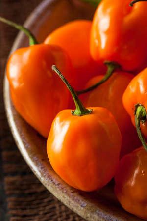 habanero: Raw Organic Orange Habanero Peppers Stock Photo