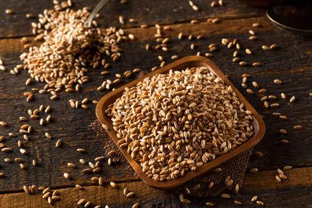 Raw Organic Spelt Grain in a Bowl