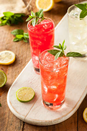 mocktail: Organic Fresh Italian Soda with Green Mint