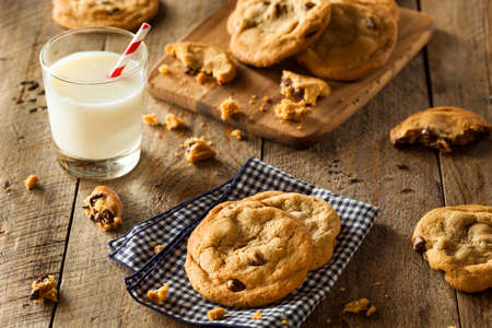 milk and cookies: Homemade Chocolate Chip Cookies with Walnuts and Milk Stock Photo