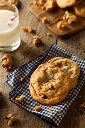 chocolate chip: Homemade Chocolate Chip Cookies with Walnuts and Milk Stock Photo