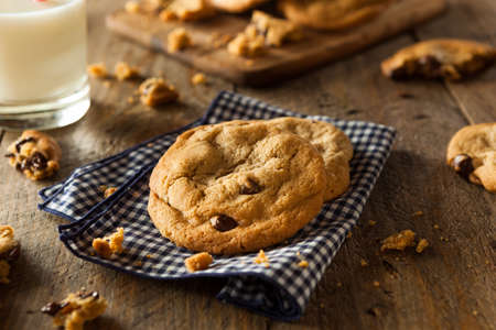 semisweet: Homemade Chocolate Chip Cookies with Walnuts and Milk Stock Photo