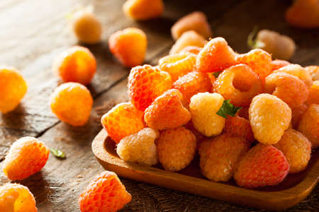 Raw Organic Orange Sunshine Raspberries Ready to Eat Banco de Imagens