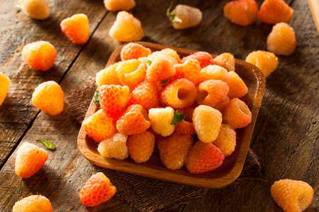 Raw Organic Orange Sunshine Raspberries Ready to Eat 스톡 콘텐츠