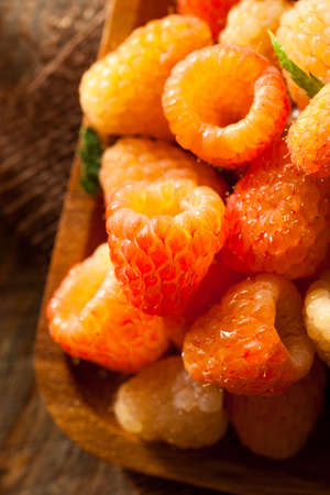 pulpy: Raw Organic Orange Sunshine Raspberries Ready to Eat Stock Photo