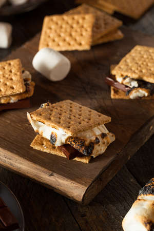 Homemade Gooey Smores with Chocolate and Marshmallows