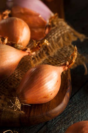 Raw Organic Spicy Shallots on a Background Banco de Imagens