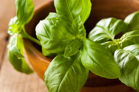 plant sweet: Raw Organic Green Basil Ready to Cook With