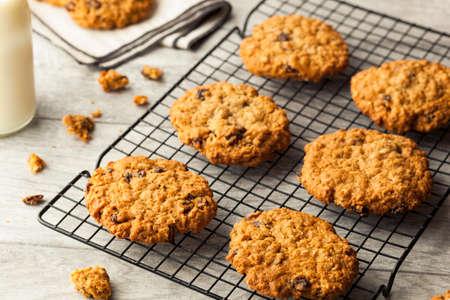 Homemade Oatmeal Raisin Cookies Ready to Eat