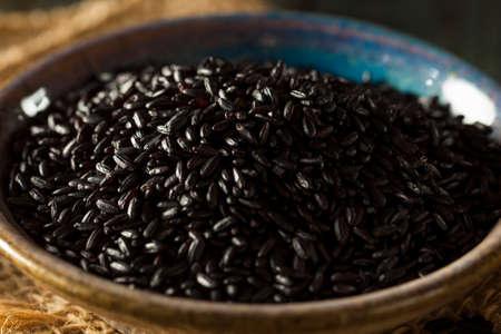 Raw Dry Organic Black Rice in a Spoon Stock Photo