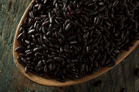 black rice: Raw Dry Organic Black Rice in a Spoon