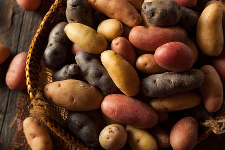 batata: Patatas Crudo Orgánico del pececillo en una cesta Foto de archivo