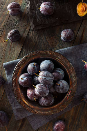 pruneau: Organic Ripe Purple Prune Plums Ready to Eat Banque d'images