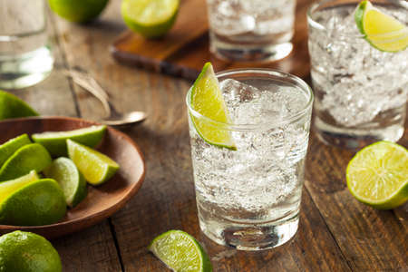 tonic: Alcoholic Gin and Tonic with a Lime Garnish