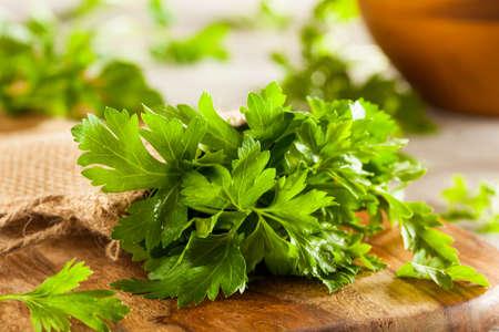 perejil: Orgánica italiano Perejil Listo para comer