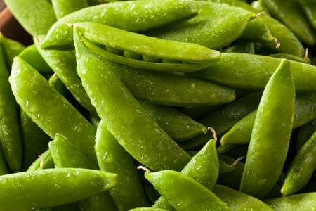 유기농 녹색 설탕 스냅인 완두콩 준비 먹을 스톡 콘텐츠 - 43785556