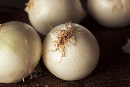 cebollas: Frescas orgánicas Cebollas blancas en un fondo Foto de archivo