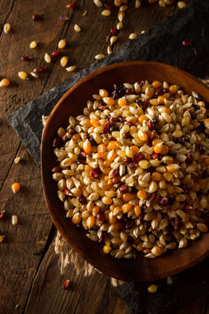 calico: Raw Organic Multi Colored Calico Popcorn in a Bowl Stock Photo