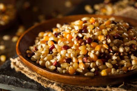 palomitas de maiz: Crudo Org�nico Colorido Calico Palomitas en un taz�n de fuente