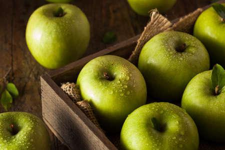 granny smith apple: Organic Green Granny Smith Apple Ready to Eat Stock Photo