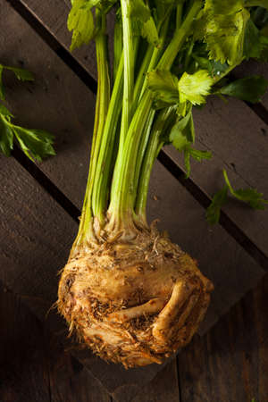 celery root: Raw Organic Celery Root Ready to Cut Stock Photo